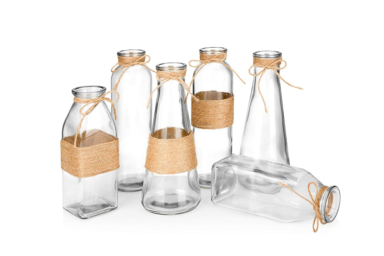 fiddle leaf fig propagation glass vase