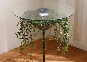 Designer Pei-Ju Wu Plant Coffee Table