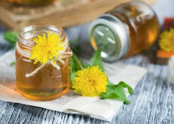 dandelion with jar of syrup
